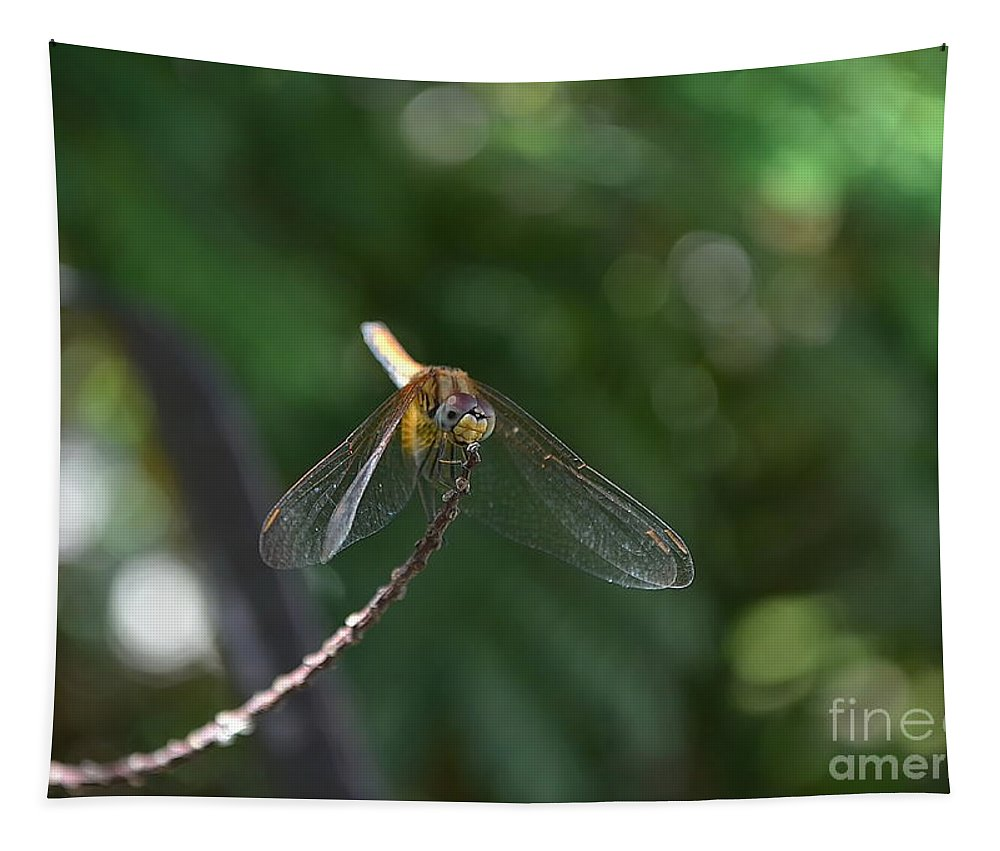 Michelle Meenawong Tapestry featuring the photograph Dragonfly by Michelle Meenawong