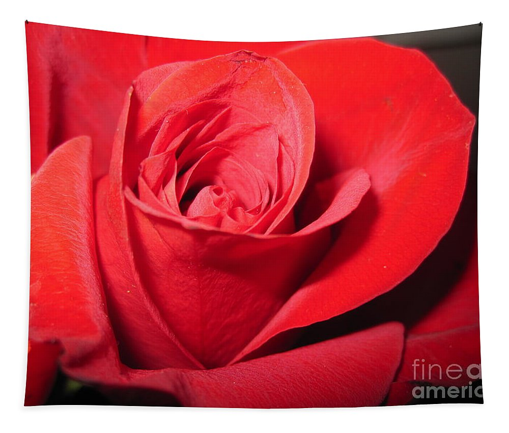 Floral Tapestry featuring the photograph Dramatic Red Rose by Tara Shalton