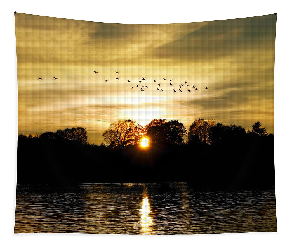 Fall Tapestry featuring the photograph Dream Of A Sunset by Mary Lane