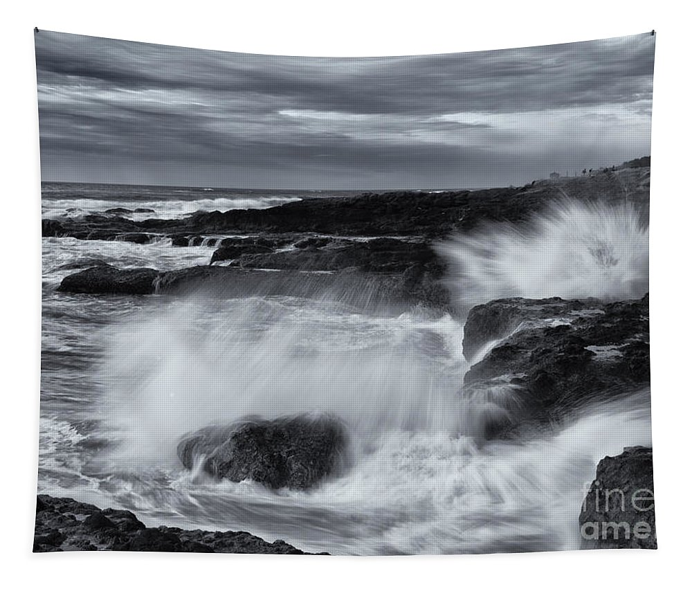 Salt Spray Tapestry featuring the photograph Driven By The Storm by Mike Dawson
