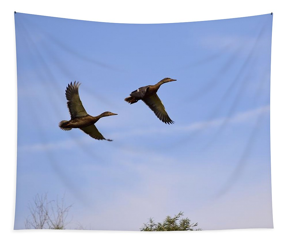 Duck Tapestry featuring the photograph Duck Moon by Bonfire Photography