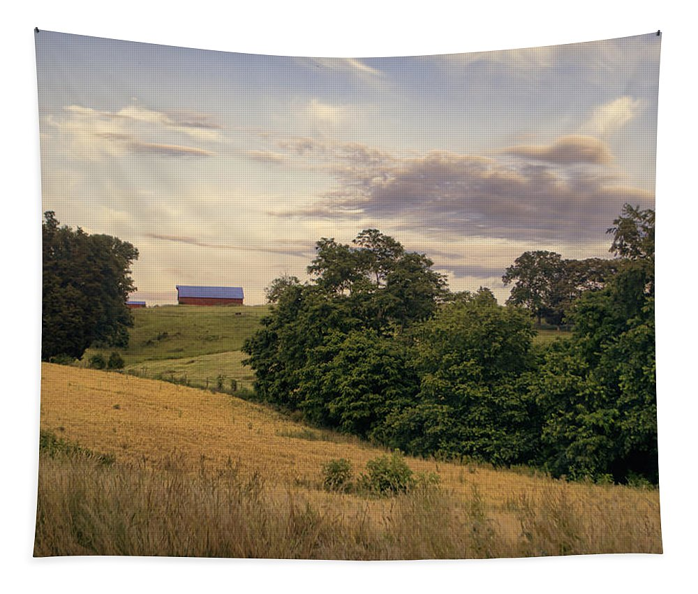 Farm Tapestry featuring the photograph Dusk On The Farm by Heather Applegate