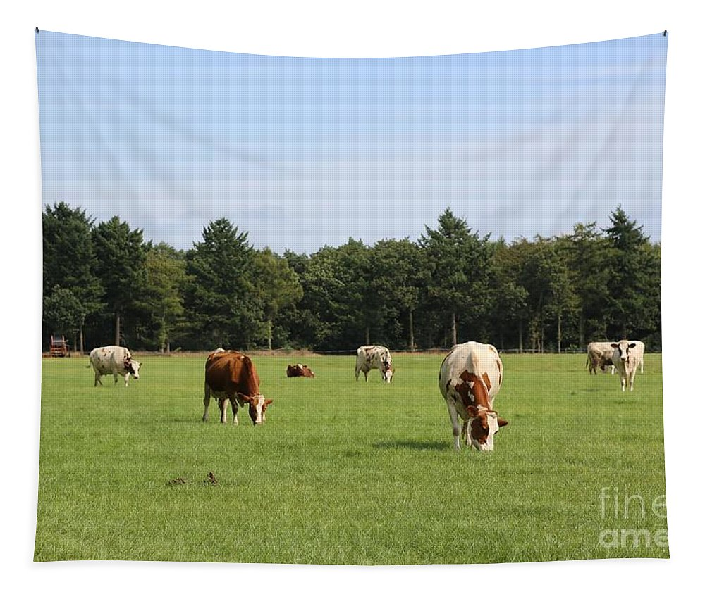 Cow Tapestry featuring the photograph Dutch Landscape With Cows by Carol Groenen