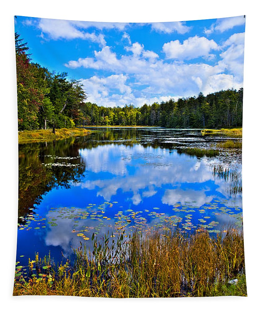 Fly Pond Tapestry featuring the photograph Early Autumn At Fly Pond - Old Forge Ny by David Patterson