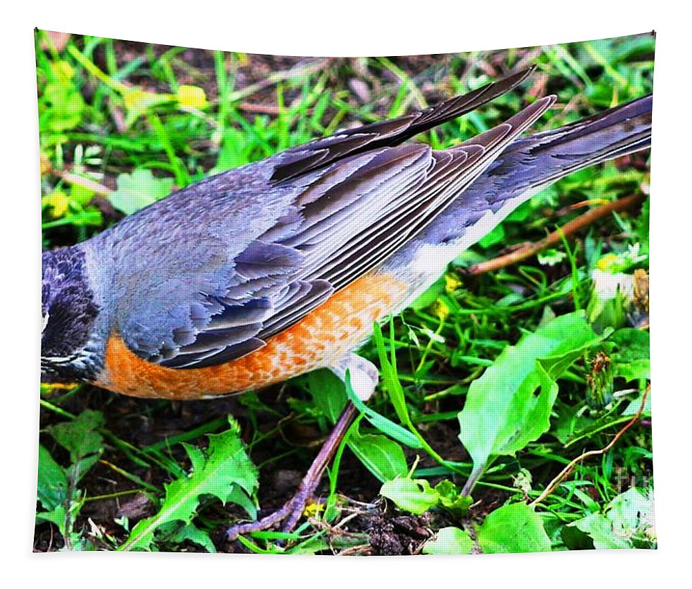Robin Tapestry featuring the photograph Early Bird Catches The Worm by Judy Palkimas