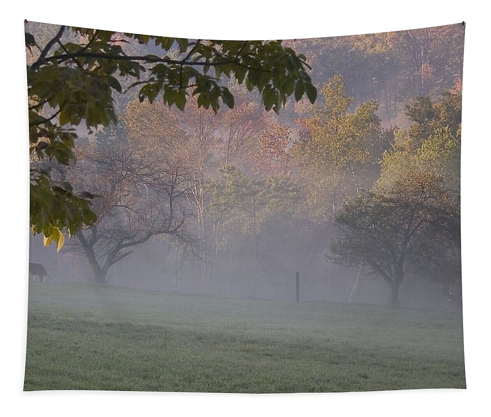 Landscape Tapestry featuring the photograph Early Morning Country by Karol Livote