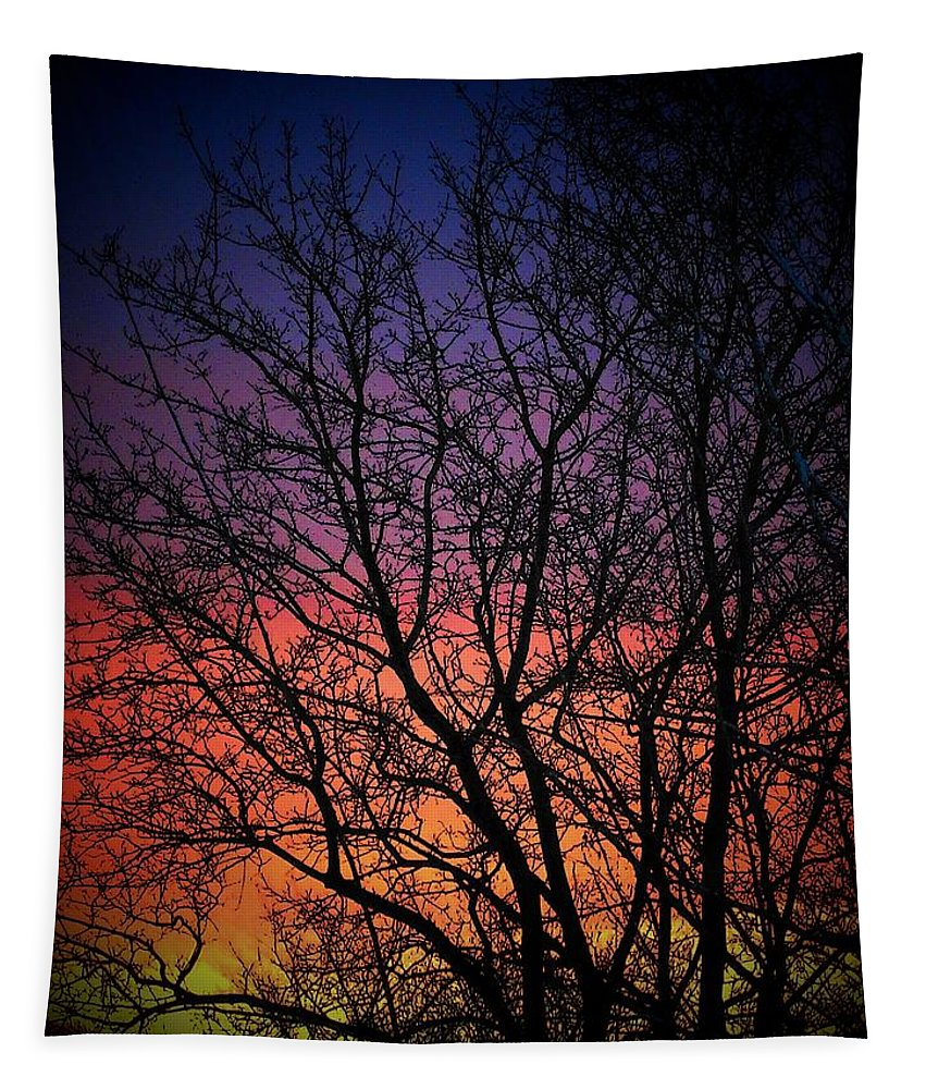 Spring Tapestry featuring the photograph Early Spring Dusk by Susan McMenamin