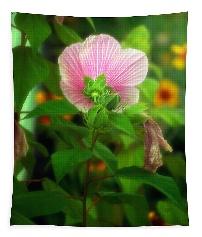 Bloom Tapestry featuring the photograph Early Summer Bloom by Thomas Woolworth