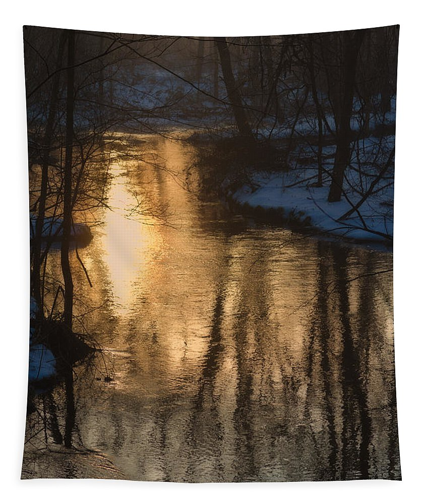 Winter Tapestry featuring the photograph Early Winter Morning by Karol Livote