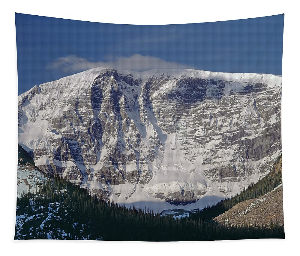 East Face Tapestry featuring the photograph 1m3743-east Face Mt. Kitchener With Cloud by Ed Cooper Photography
