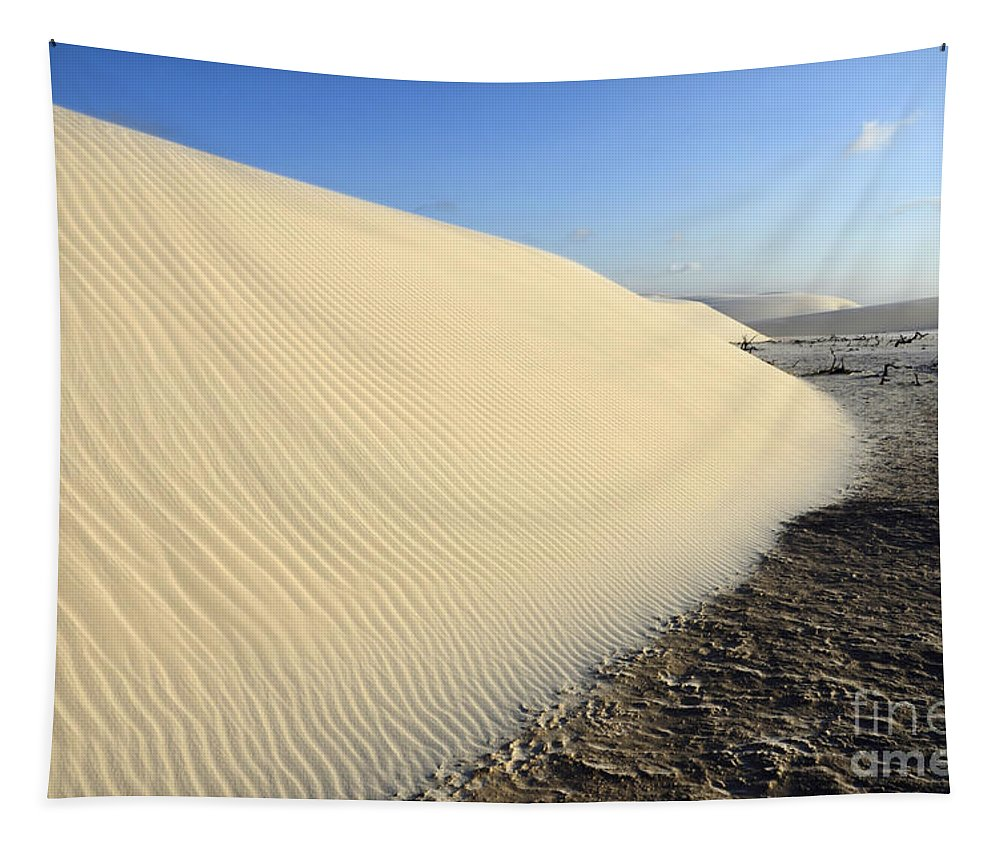 Lencois Maranhenses Tapestry featuring the photograph Edge Of The Dune Brazil by Bob Christopher