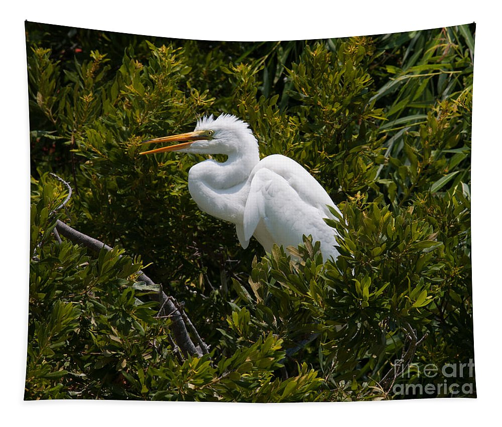 Egret Tapestry featuring the photograph Egret In Bushes by Dale Powell