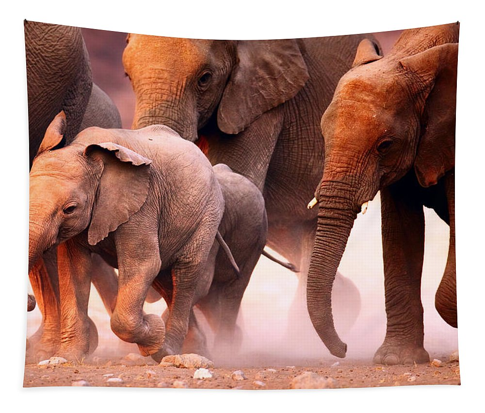 Wild Tapestry featuring the photograph Elephants Stampede by Johan Swanepoel