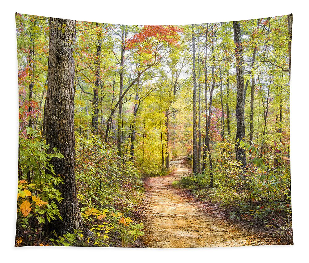 Appalachia Tapestry featuring the photograph Elfin Forest by Debra and Dave Vanderlaan