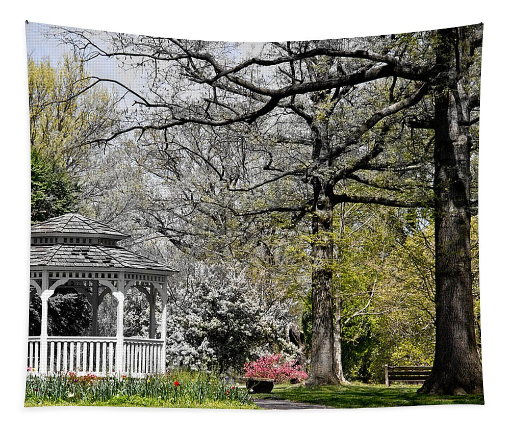 Springtime Tapestry featuring the photograph Emerging Of Spring by Tom Gari Gallery-Three-Photography