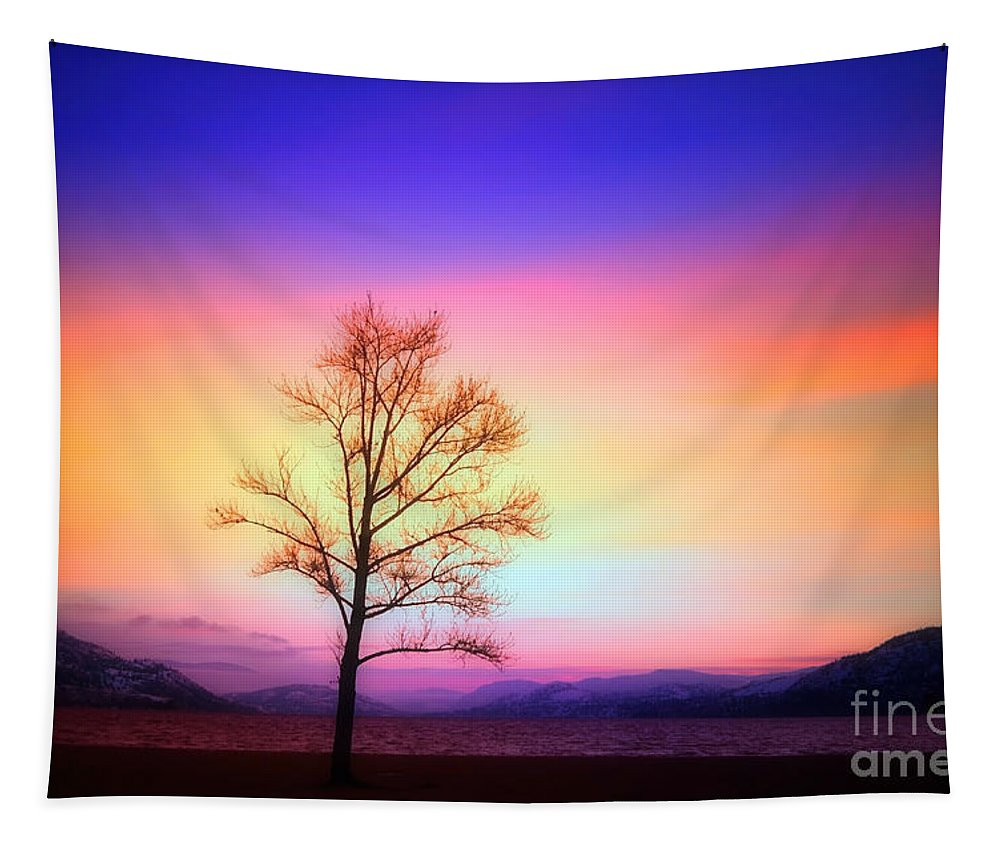 Lake Tapestry featuring the photograph Evening Sky by Tara Turner