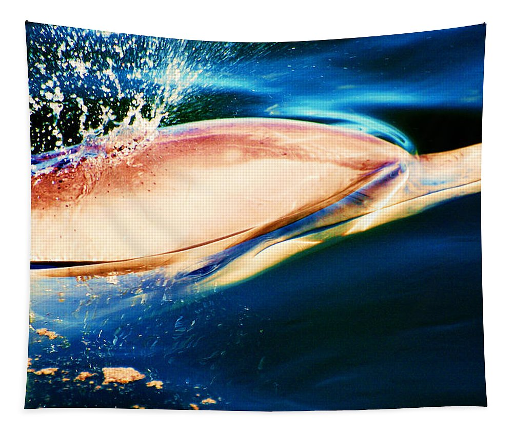 Dolphin Tapestry featuring the painting Eye See You by Davids Digits