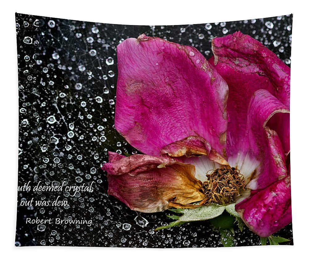 Faded Rose Tapestry featuring the photograph Faded Rose - Youth And Age by Nikolyn McDonald