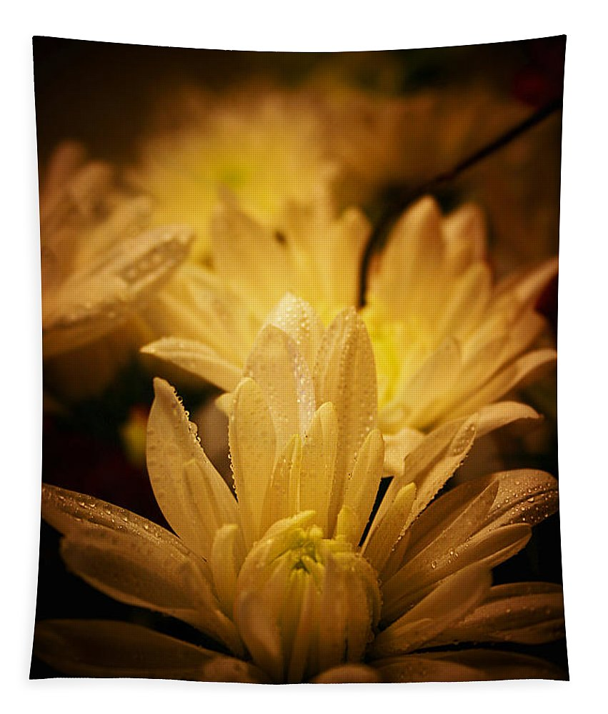 Floral Tapestry featuring the photograph Fading Beauty by Susan McMenamin