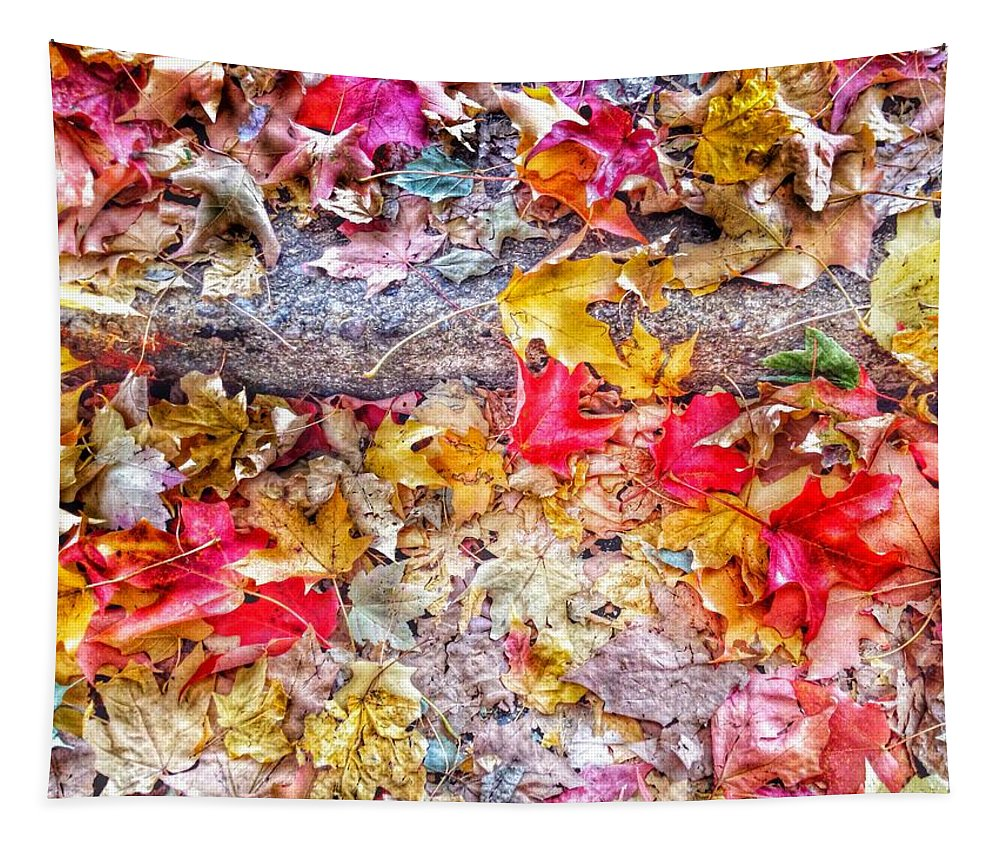 Fallen Tapestry featuring the photograph Fallen Hues by Marianna Mills