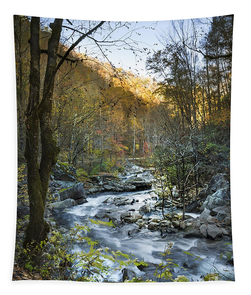 Appalachia Tapestry featuring the photograph Fall Along Citico Creek by Debra and Dave Vanderlaan
