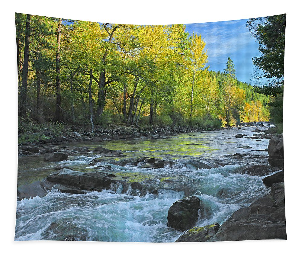 Fall Colors Tapestry featuring the photograph Fall Colors And The Little Salmon River by Ed Cooper Photography