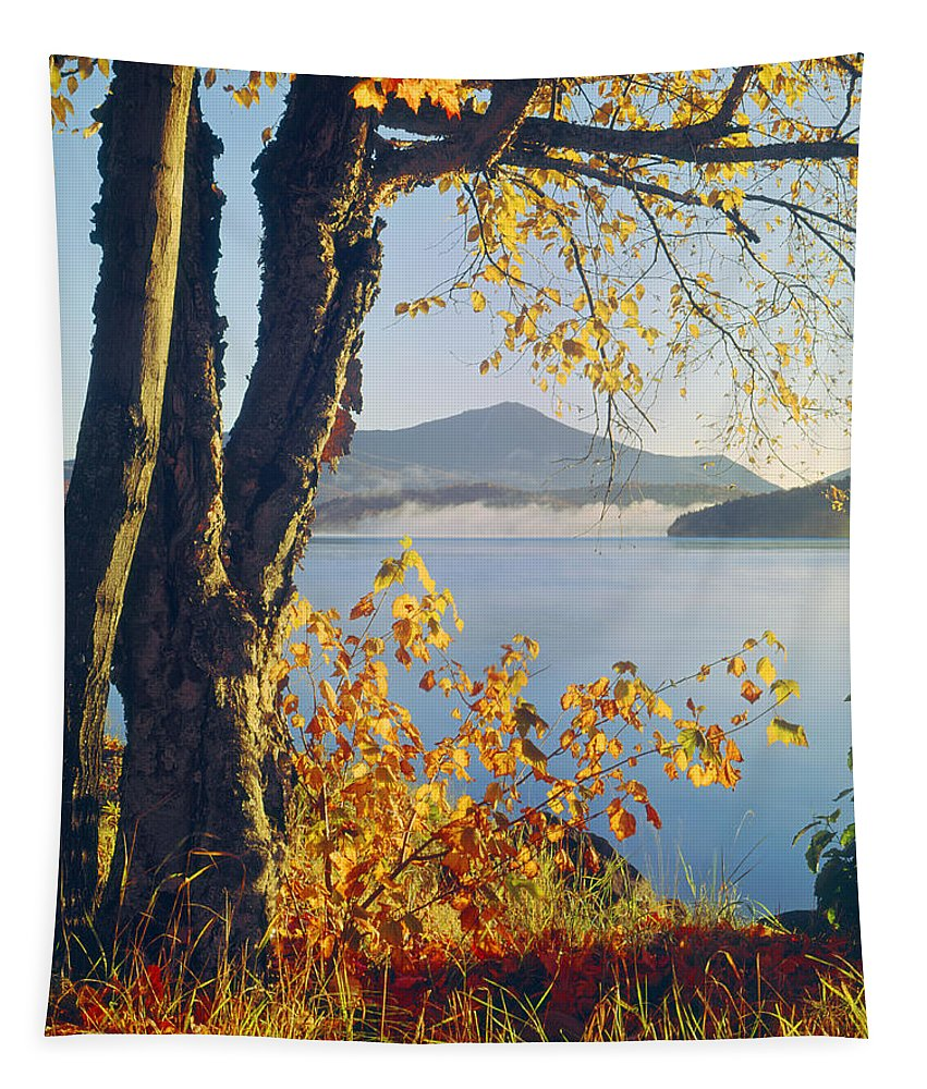 Fall Colors Tapestry featuring the photograph Fall Colors Frame Whiteface Mountain by Ed Cooper Photography
