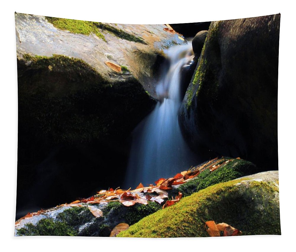 Fall Flow Tapestry featuring the photograph Fall Flow by Dan Sproul