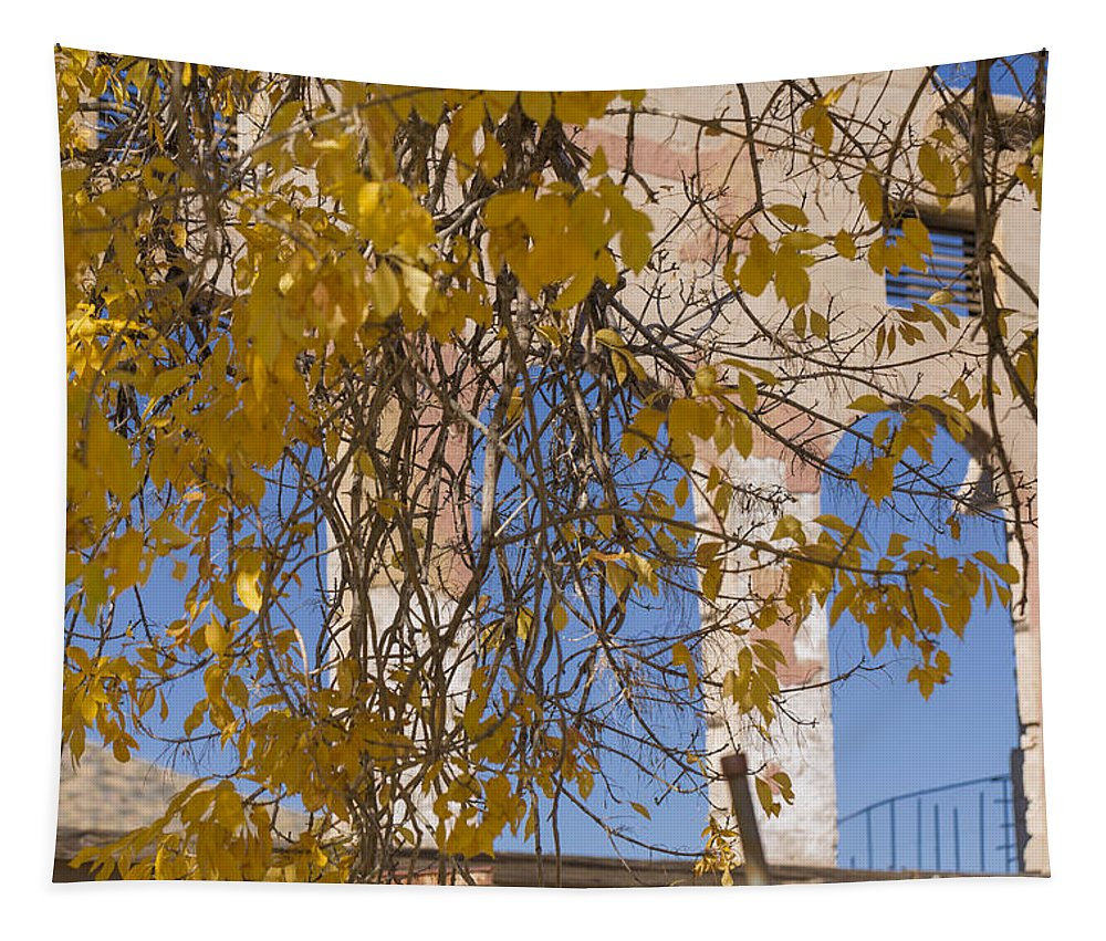 Abandoned Tapestry featuring the photograph Fall Leaves On Open Windows Jerome by Scott Campbell
