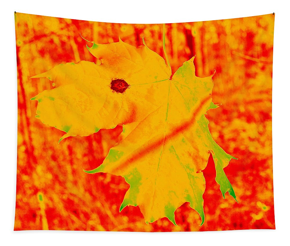 Finland Tapestry featuring the photograph Fall Maple by Jouko Lehto