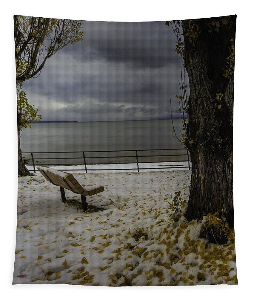 Fallen Leaves Tapestry featuring the photograph Fallen Leaves by Mitch Shindelbower