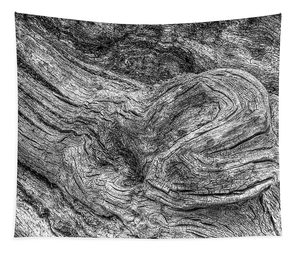 Tree Bark Tapestry featuring the photograph Fallen Tree Bark Bw by Gill Billington
