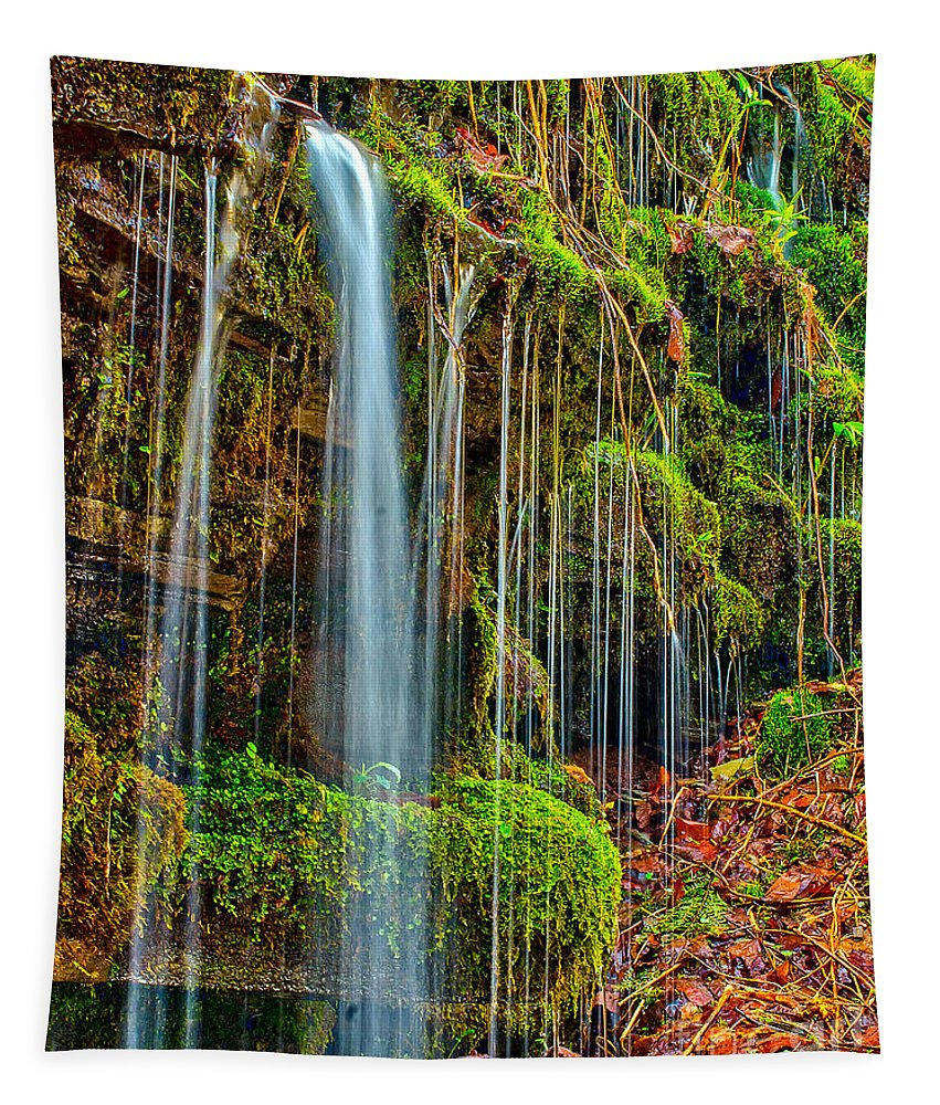 Waterfall Tapestry featuring the photograph Falls And Moss by Nick Zelinsky