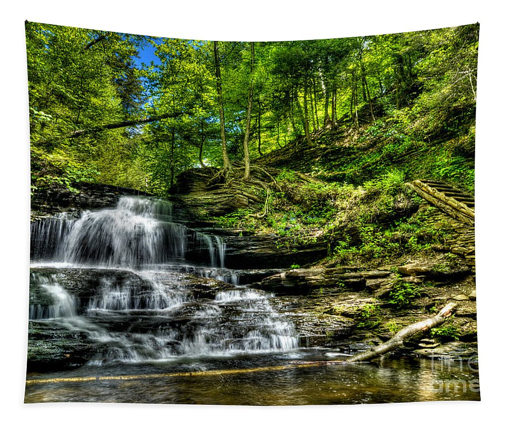 Ricketts Glen Tapestry featuring the photograph Falls And Steps by Paul W Faust - Impressions of Light