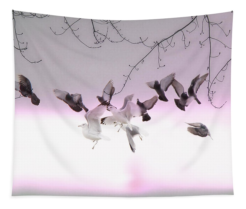 Pigeons Tapestry featuring the photograph Feather Light by Gothicrow Images