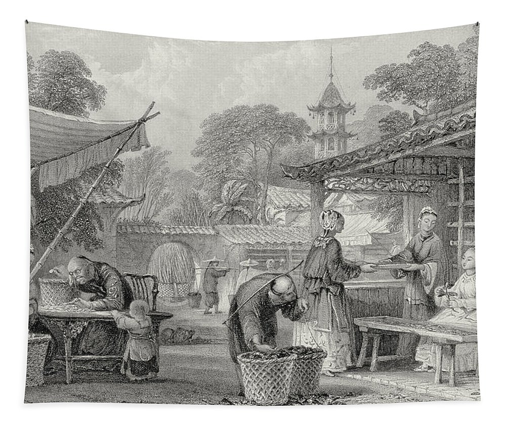 Chinese Tapestry featuring the drawing Feeding Silkworms And Sorting Cocoons by Thomas Allom