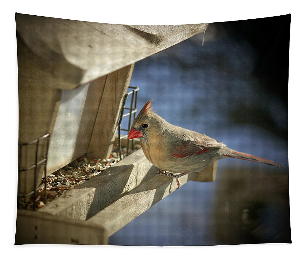 Bird Tapestry featuring the photograph Female Cardinal 2 by Susan McMenamin
