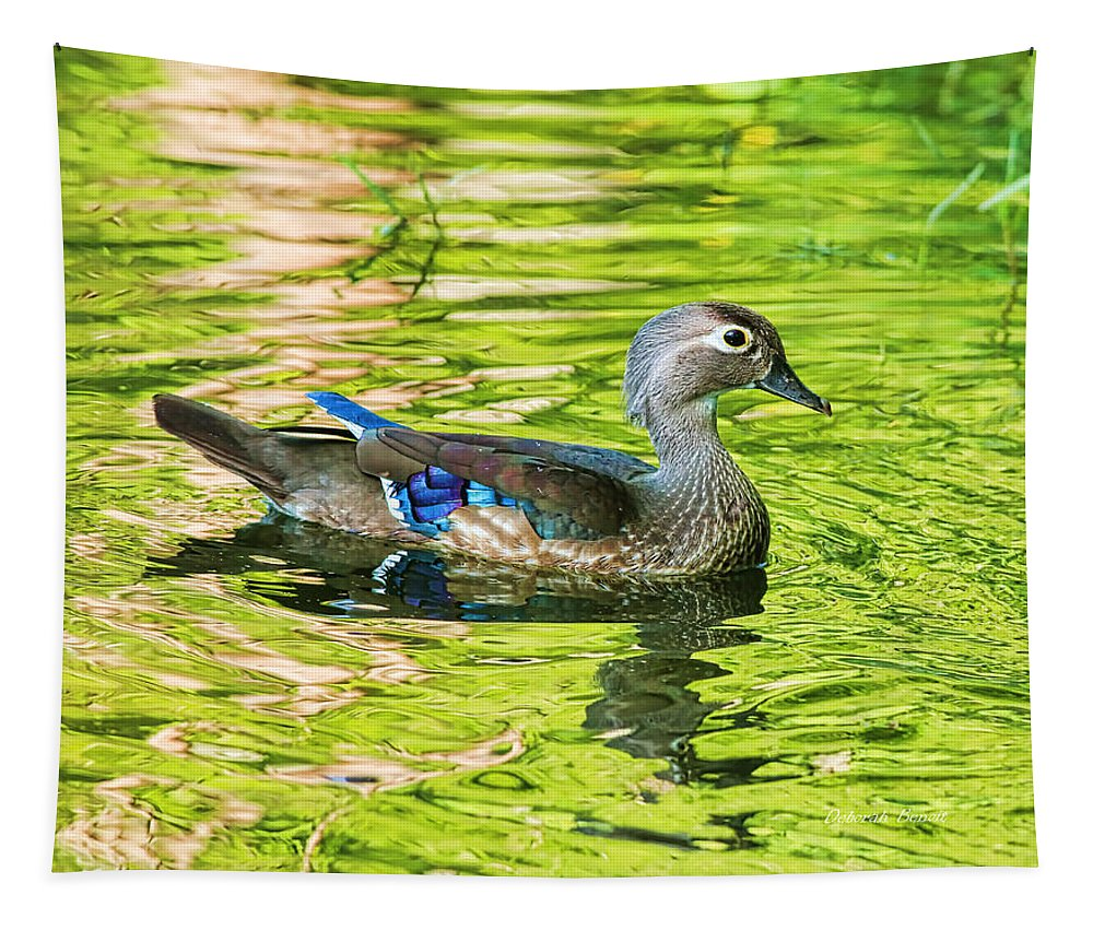 Wood Duck Tapestry featuring the photograph Female Wood Duck by Deborah Benoit