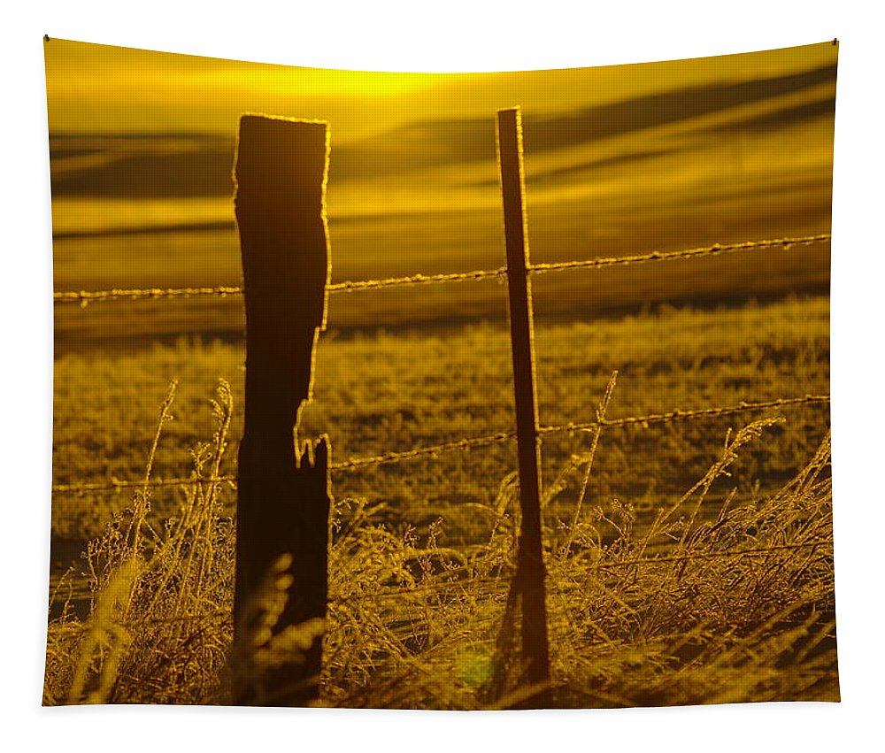 Morning Tapestry featuring the photograph Fence Post In The Morning Light by Jeff Swan