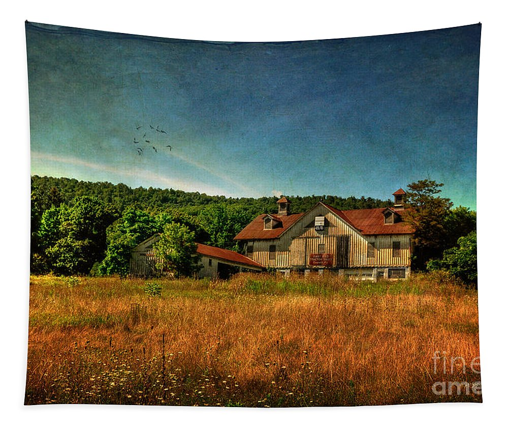 Barn Tapestry featuring the photograph Field Of Broken Dreams by Lois Bryan