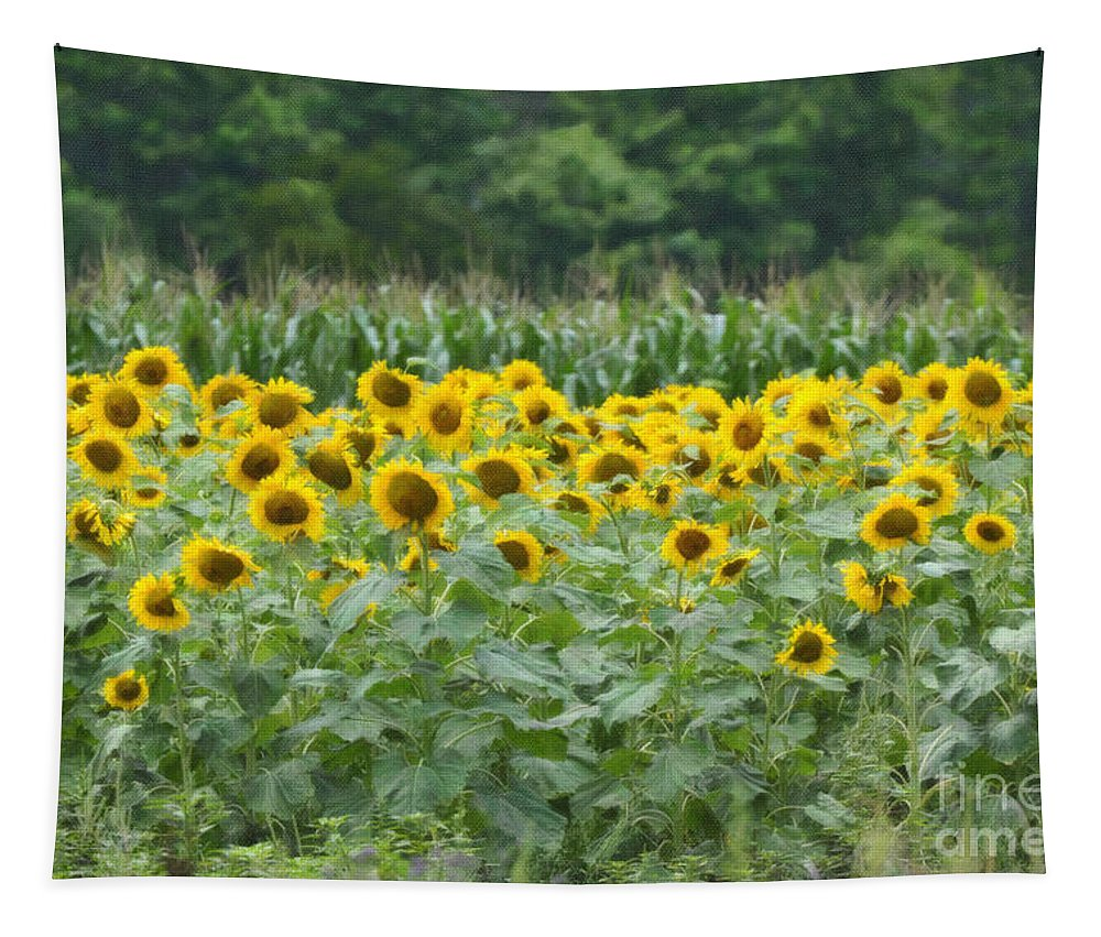 Sunflower Tapestry featuring the photograph Field Of Sunflowers by Dale Powell