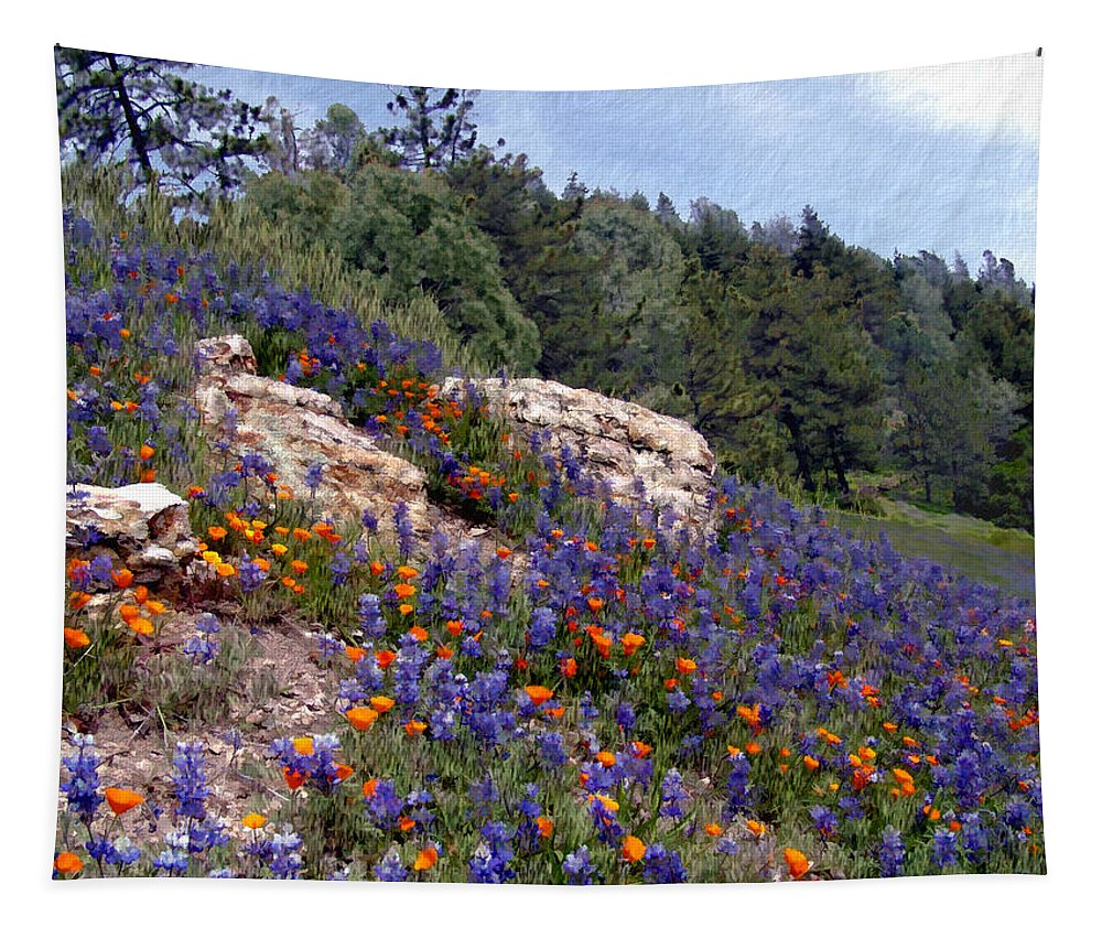 Flowers Tapestry featuring the photograph Figueroa Mountain Splendor by Kurt Van Wagner