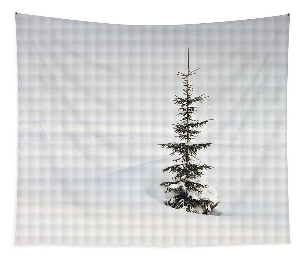 Fir Tapestry featuring the photograph Fir Tree And Lots Of Snow In Winter Kleinwalsertal Austria by Matthias Hauser