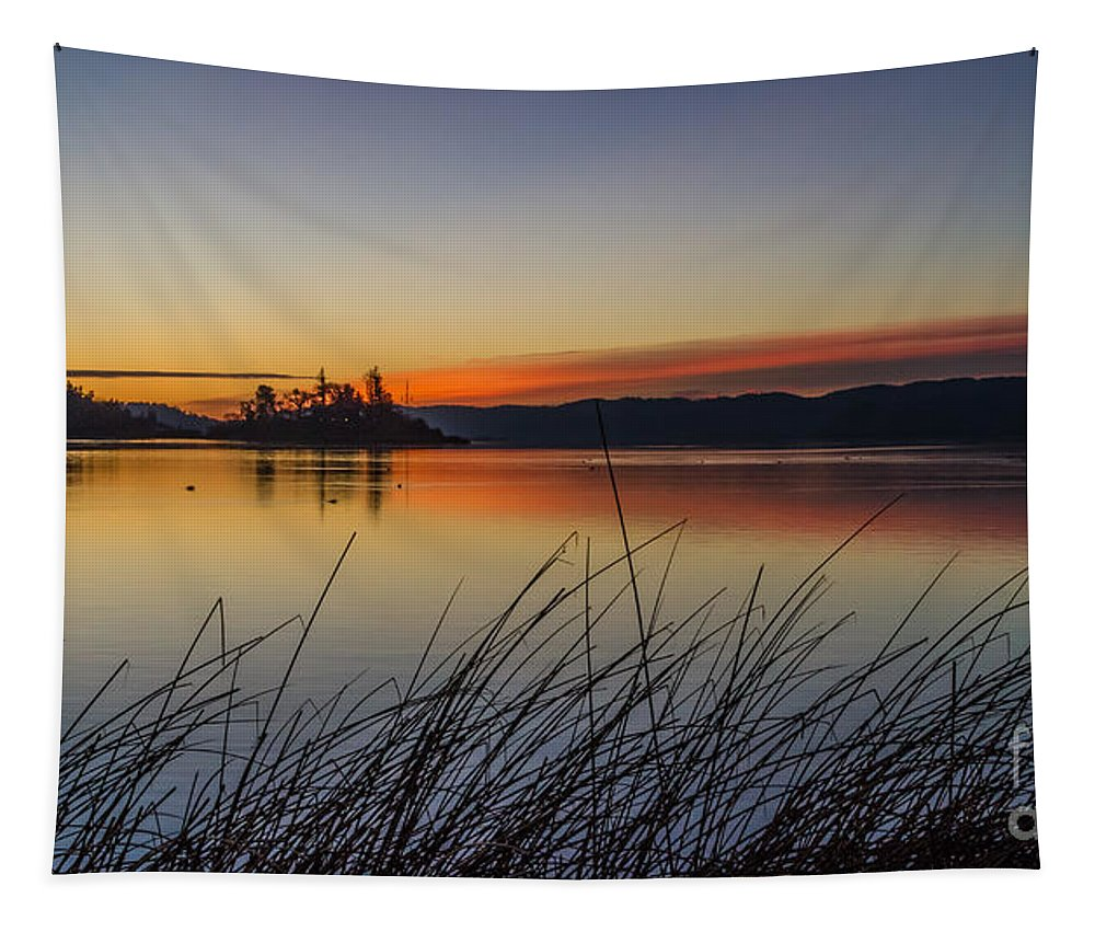 First Light Tapestry featuring the photograph First Light by Mitch Shindelbower