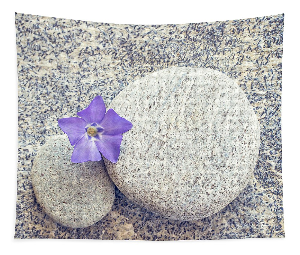 Zen Tapestry featuring the photograph First Periwinkle by Delphimages Photo Creations