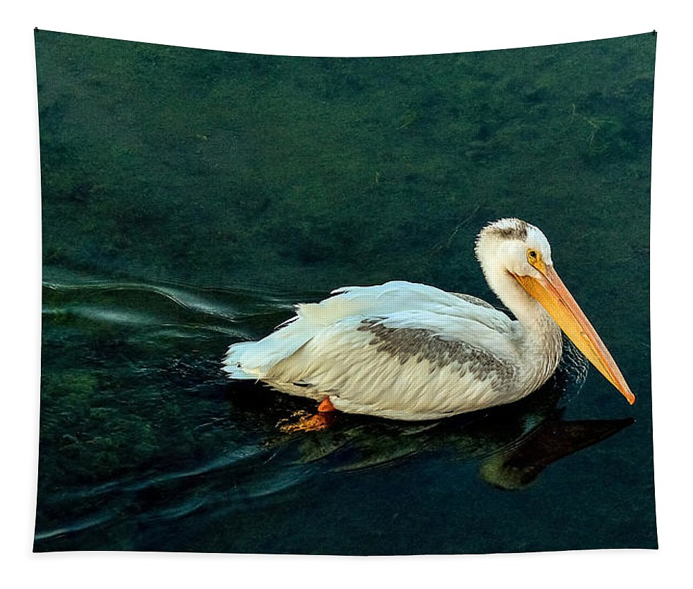 Pelican Tapestry featuring the photograph Fishing Bridge Pelican At Dawn by Yeates Photography