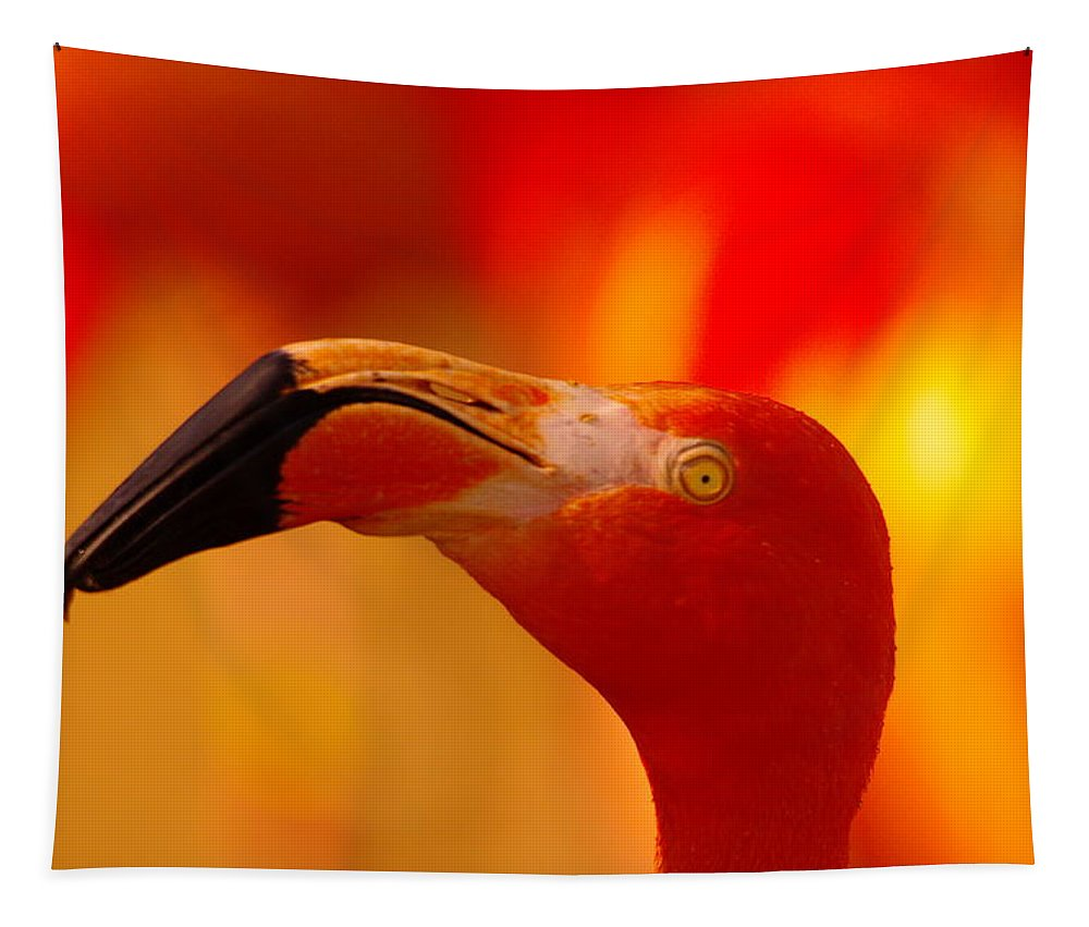 Flamingo Tapestry featuring the photograph Flamingo by Jeff Swan