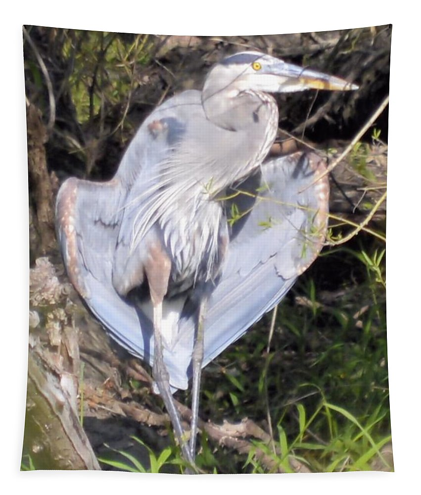 Blue Heron Tapestry featuring the photograph Flasher In The Park by Bonfire Photography