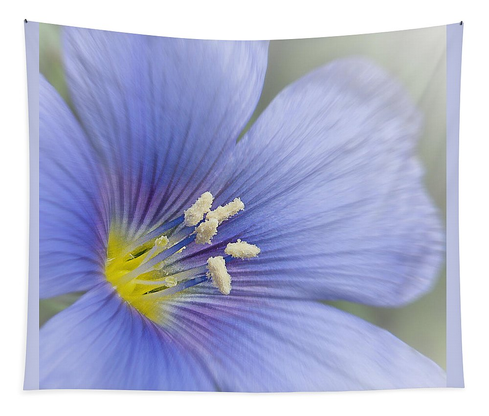 Blue Tapestry featuring the photograph Blue Flax Close-up by Patti Deters
