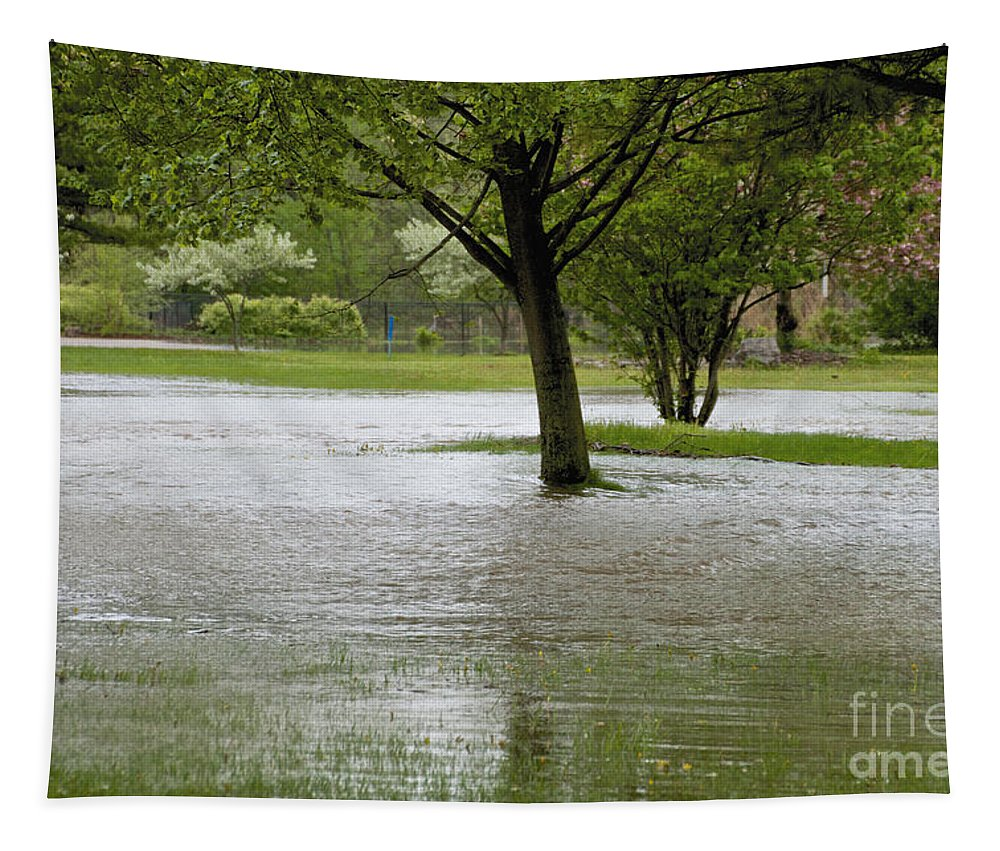 Ellison Park Tapestry featuring the photograph Flooded Park by William Norton